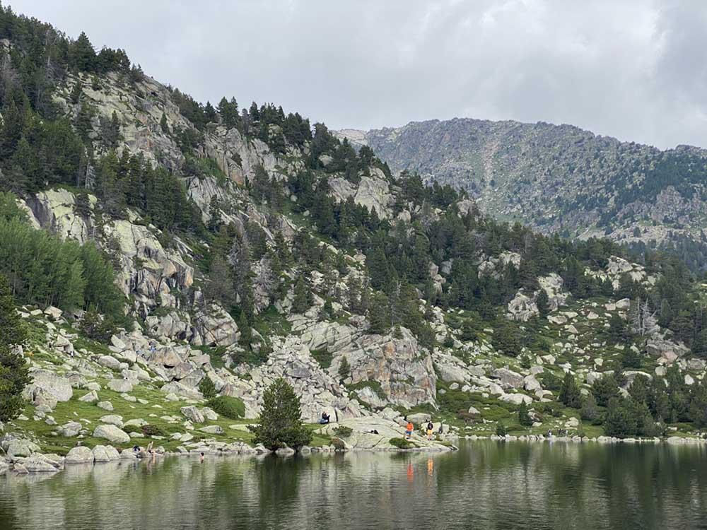 llac-malniu