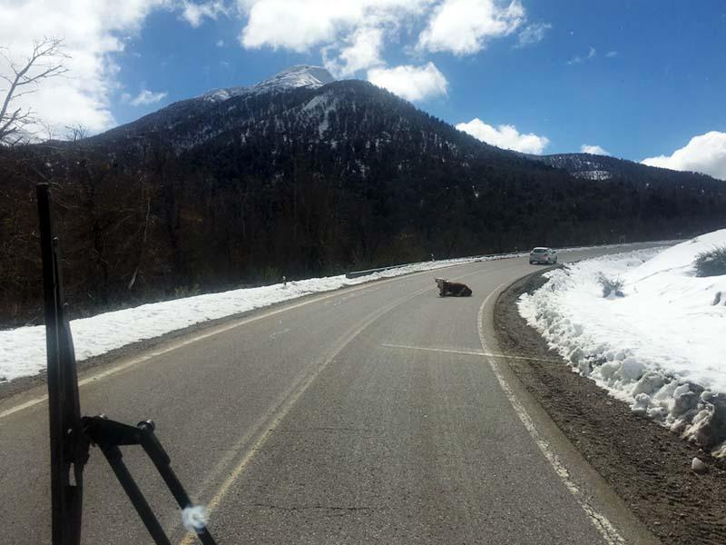 ruta-40-argentina-direccio-villa-la-angostura-ivan-sanz