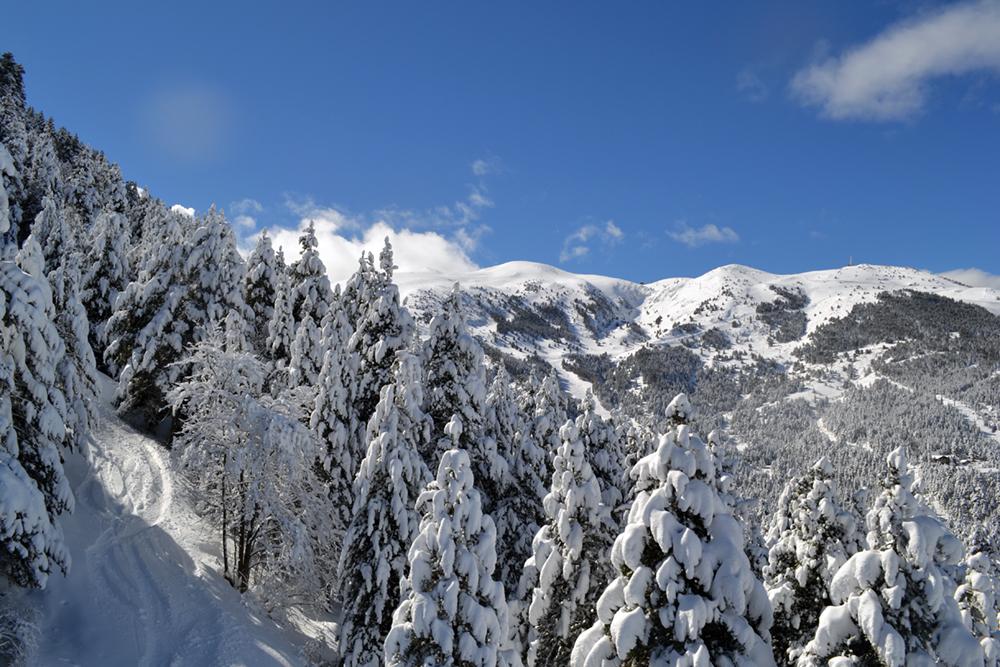 tosa-nevada-la-molina